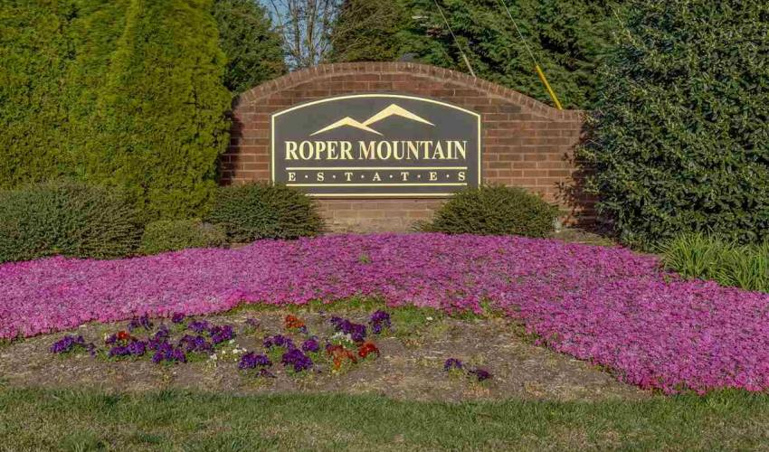 Picture 33 of 162 Roper Mountain Court