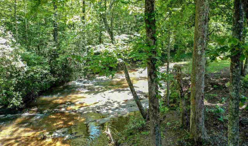 Picture 6 of 17 Puckett Mill Way