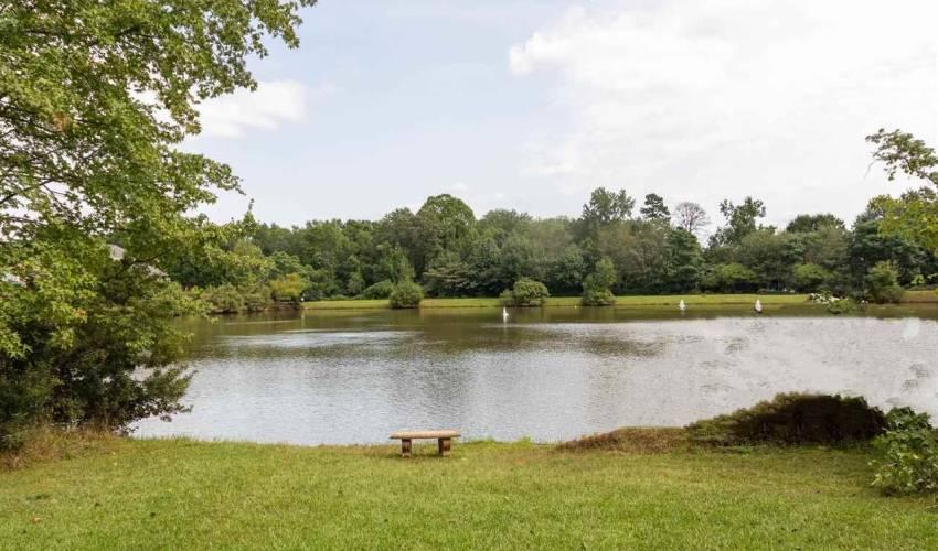 Picture 28 of 210 Asheton Lakes Way
